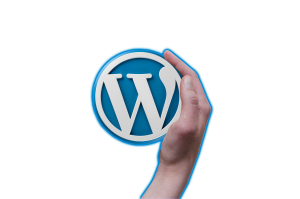 Should a business incorporate its Branding with SEO? i4 Web Services | Branding with SEO