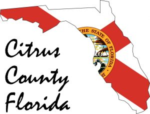 Web Services for Businesses and Charities in Citrus County Florida