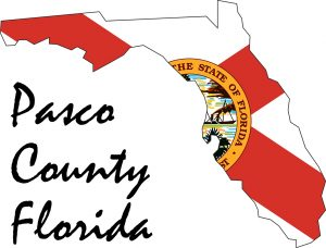 Web Services for Businesses and Charities in Pasco County Florida