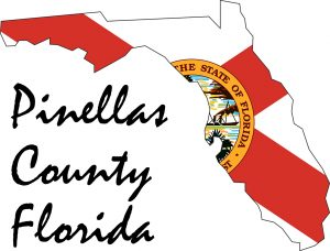 Web Services for Businesses and Charities in Pinellas County Florida